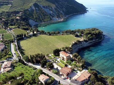 Clos Sainte Magdeleine Wines - Cassis, France