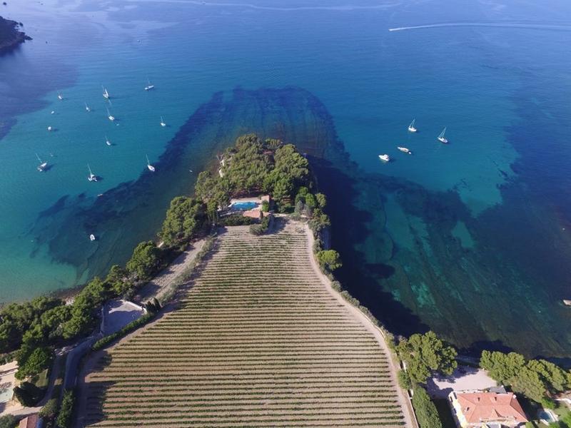 Clos sainte magdeleine vins cassis france - Office tourisme cassis les calanques a pied ...