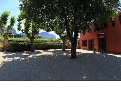 Domaine du Bagnol Vins - Cassis, France