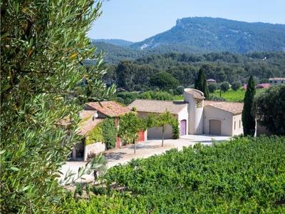 Domaine du Paternel Vinos - Cassis, Francia