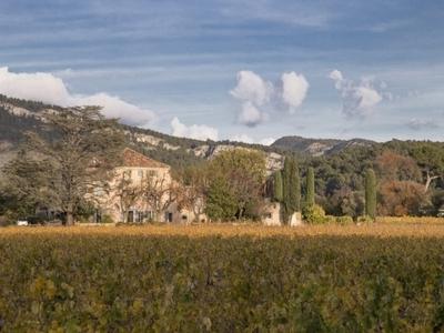 Domaine Cassis Bodin Vins - Cassis, France
