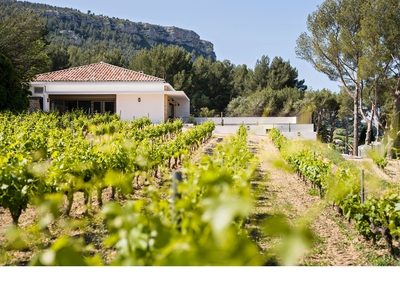 Domaine de la Dona Wines - Cassis, France