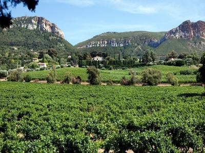 Circuit en trottinette électrique - Vignobles et dégustation (niveau facile) - Cassis, France
