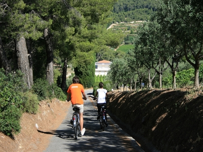 Electric Bike Tour - Discover the 12 wine estates (easy level - 3H) - Cassis, France