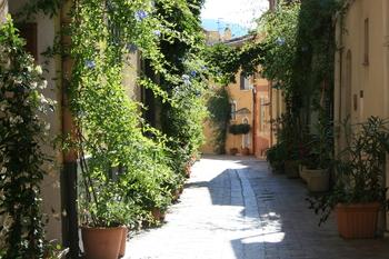 Cassis centre ville historique - ruelles fleuries
