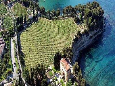 The CLOS STE MAGDELEINE guided tour and tasting at the vineyard - Cassis, France